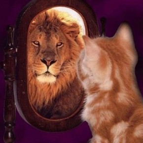 Управление уверенностью или во что мы верим когда уверенны
